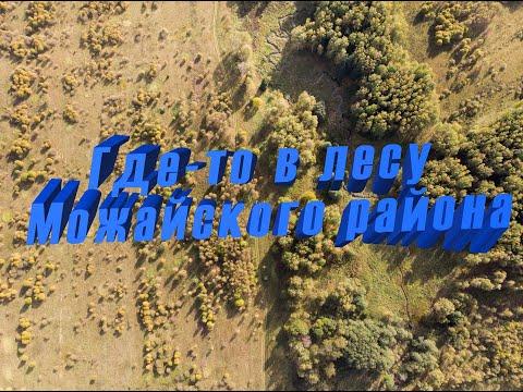 Где-то в лесу Можайского района.
