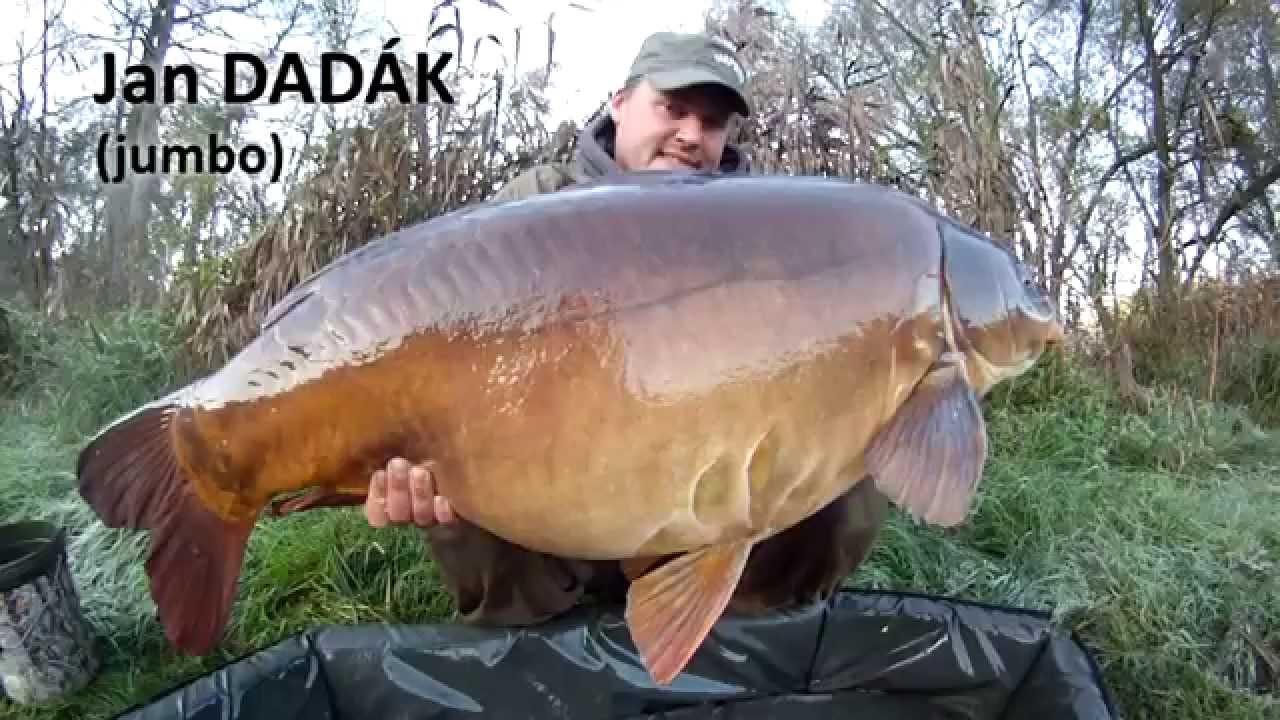 BIG CARP FISHING - NIKL TEAM 2014