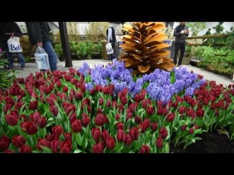 2016 Ottawa Home + Garden Show Living Landscapes