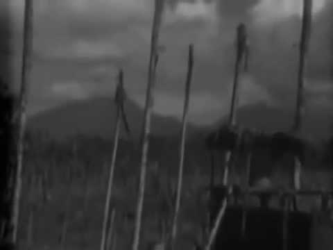 Native Fijian Patrol & Damage, Vella Lavella, Solomons, 10/29/1943 (full)