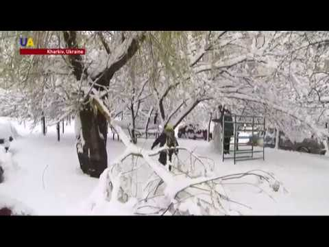 Unexpected Snowstorm in Eastern and Central Ukraine Closes Schools, Airports