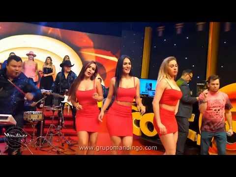 grupo MANDINGO - Numero Equivocado (TV - Playback)