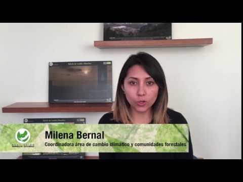 Sí Ambiental para la inclusión de las comunidades rurales- Posconflicto Colombia