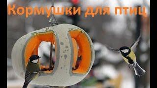 Кормушки для птиц смотреть