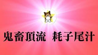 马保国最新视频,不花钱在这儿看!太红了,中国顶流!老同志突然爆红的背后逻辑|在中国赚大钱的一个秘诀