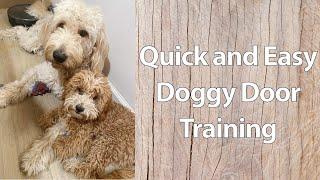 Dog Training: Teaching how to use a Doggie Door