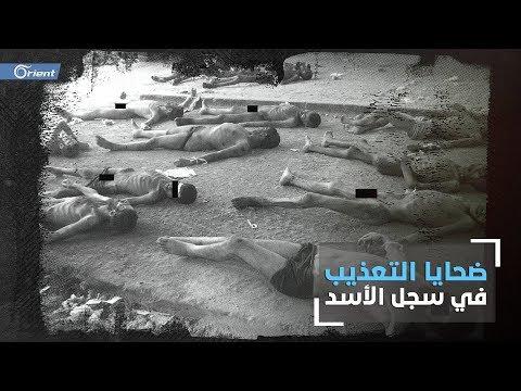 في اليوم العالمي لمساندة ضحايا التعذيب تعرف على أعداد القتلى في سجون الاسد؟  - نشر قبل 12 ساعة