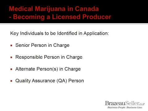Medical Marijuana In Canada: Weeding Through the Risks and Opportunities
