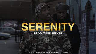 G-funk Rap Beat 2Pac West Coast Instrumental - Serenity (prod. by Tune Seeker)