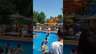 Baile y animación Camping Internacional Aranjuez 08/07/2018
