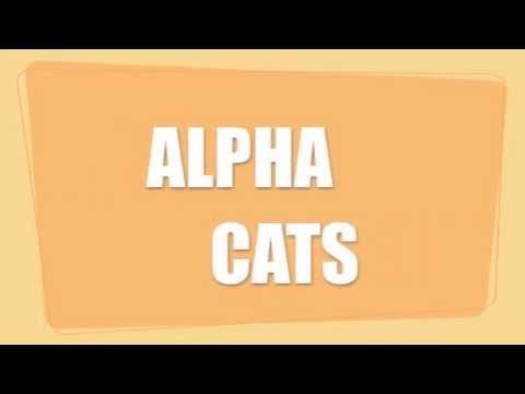 """ALPHA CATS - """"Old Major Barnes"""""""