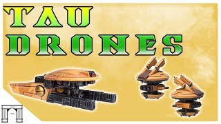 40k Lore, The Humble Drone, Foundation of Tau Society