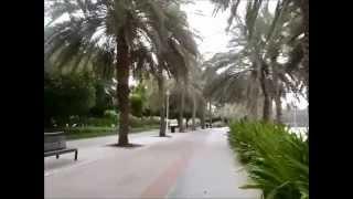 zwiedzanie parku creek w Dubai