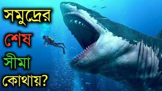 মহাসাগর কতটা গভীর- তা জানলে আপনি অবাক হতে বাধ্য হবেন | How Deep Is the Ocean in Bangla