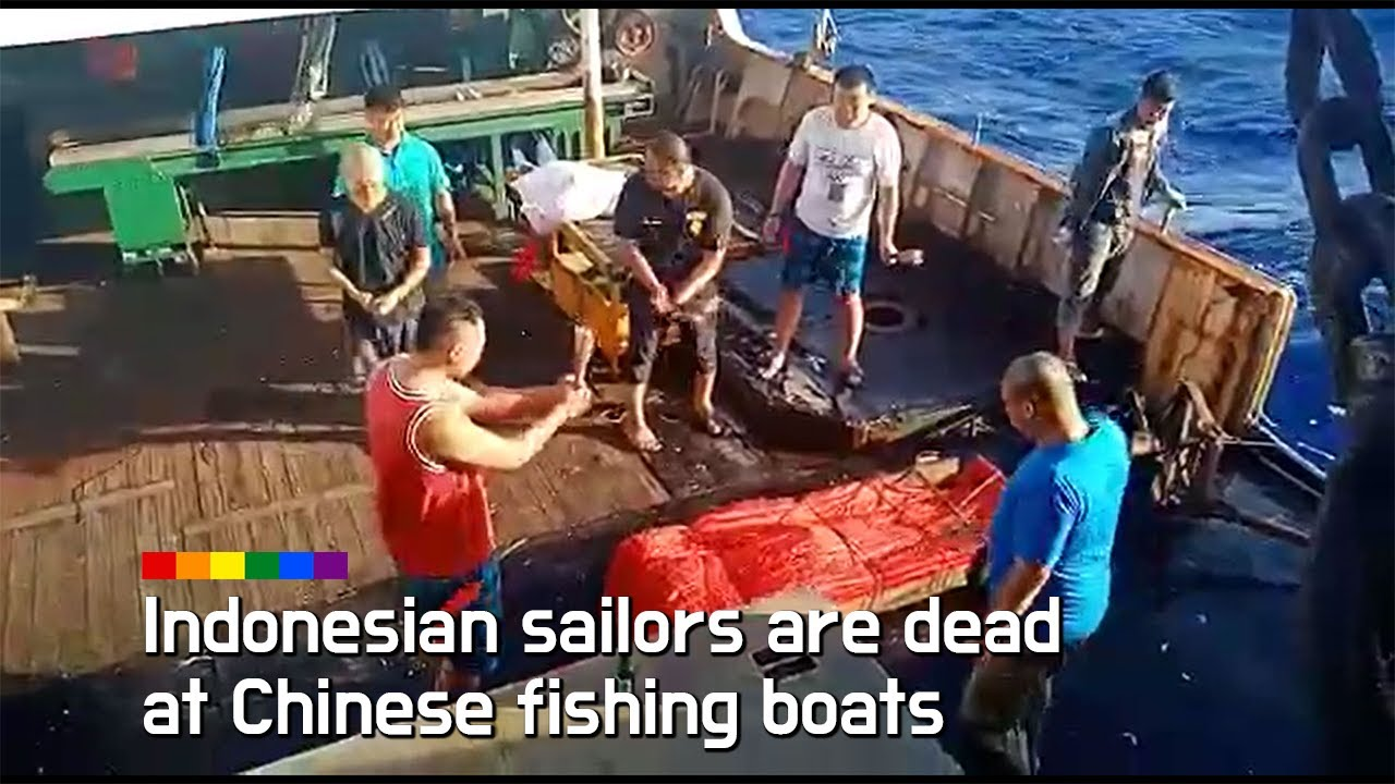 Indonesian sailors are dead at Chinese fishing boats.