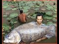 A man catching Very big fishes with long fish-net- Natural Living