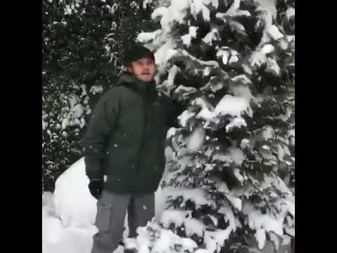 Aras Bulut İynemli Kar Paylaşımı