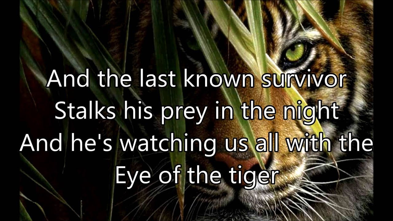 survivor eye of the tiger lyrics youtube. Black Bedroom Furniture Sets. Home Design Ideas