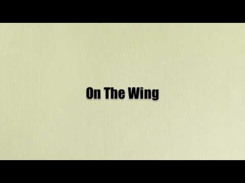 On The Wing by Owl City