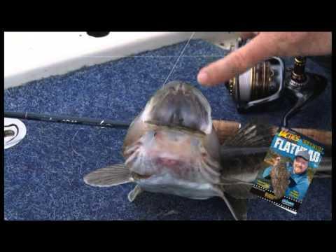 Estuary Flathead Trailer