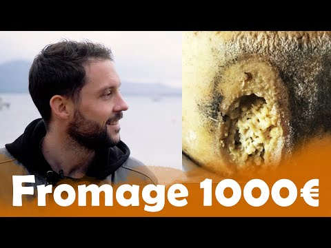 Fromage à 19€ VS 1000€ en Corse - Morgan VS