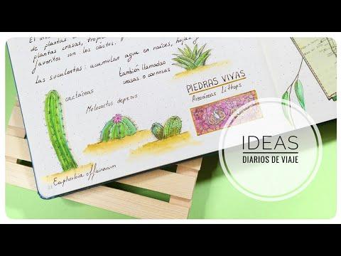 ideas-para-el-diario-de-viaje-#3:-jardÍn-botÁnico-⭐-pintando-cactus-⭐