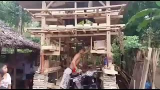 Inilah Proses Panen Madu Trigona Lombok