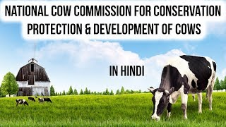 National Cow Commission gets Cabinet's nod, What makes Cow an important National Resource for India?