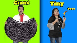 Giant Food Vs Tiny Food Challenge | Food Challenge India | Hungry Birds Challenge