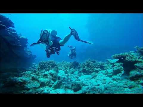 Boat Dive off Oceanside in Kwajalein, Marshall Islands.