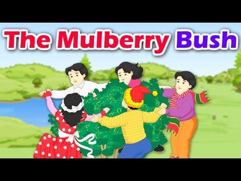 the-mulberry-bush-|-english-nursery-rhyme-with-lyrics-|-baby-song-|-kidda-junction