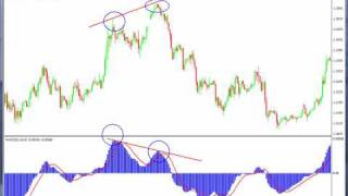 Forex Trading MACD indicator how to use Bearish Divergence
