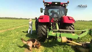Expeditie Oost: Bij boer Gerrit uit Ommen op de tractor