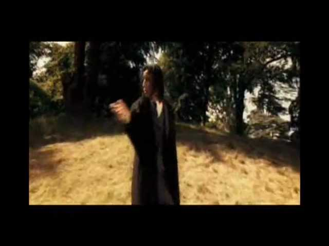 Harry Potter: Disarming Charm - Expelliarmus