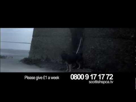 Scottish SPCA Save Lives Campaign