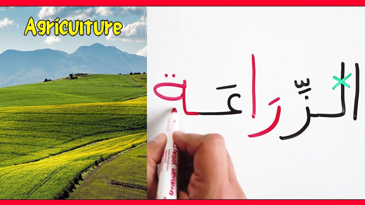 كلمات طويلة مع شرح قواعد القراءة و الكتابة Reading long Arabic Words - Learn Arabic
