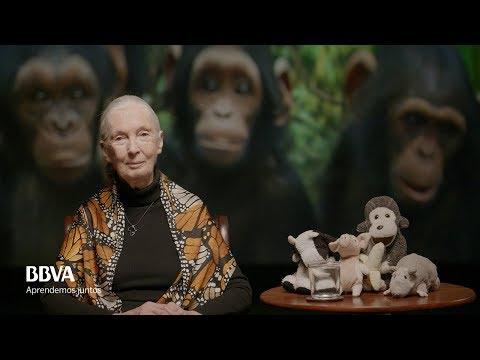 Versión Completa. Lecciones de vida de un espíritu indomable. Jane Goodall, primatóloga