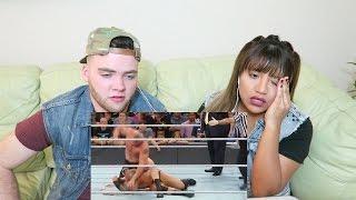 Bloodiest Match Ever | Brock Lesnar vs Randy Orton | BRUTAL FIGHT | REACTION!!