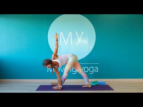 Ashtanga Vinyasa Yoga tous niveaux -1ere série