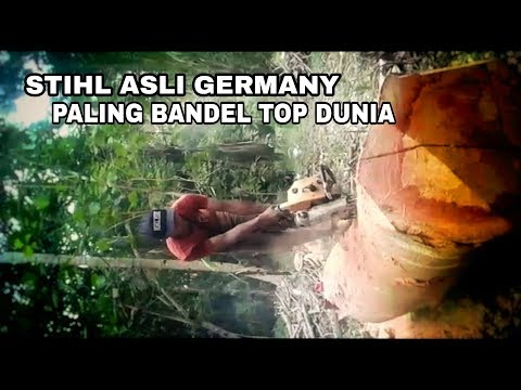 STIHL ASLI GERMANY PALING BANDEL TOP DUNIA