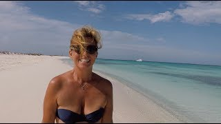 #paradise #loveit Running Pirate ALLY! We safely arrived in Venezuela waters. Sailing Ocean Fox #67