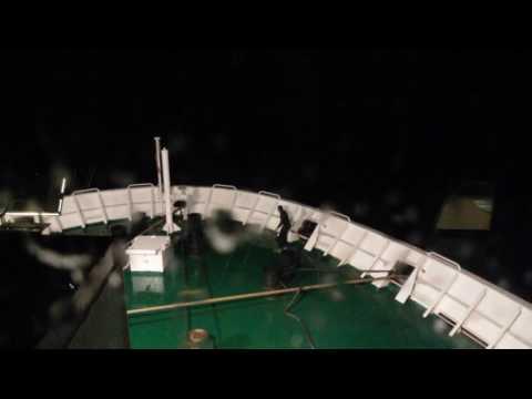 Stowaway Ship - Clandestin Navire