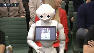 Future is here & its name is Pepper!