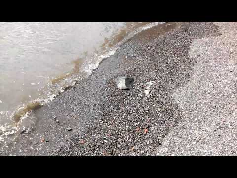 HTC DROID Incredible 4G LTE sample 1080p video
