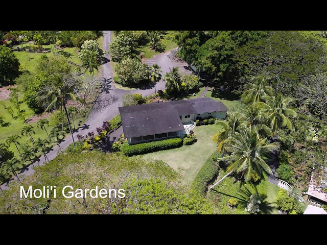 Molii Gardens at Kualoa - TravelerBase - Traveling Tips & Suggestions