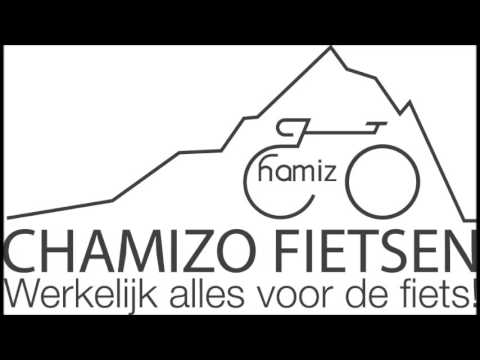 Interview op Radio 2 over de nummerplaat bij een High Speed E-bike