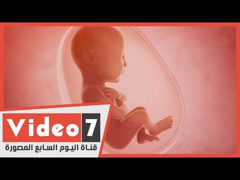 دار الإفتاء: يجوز التدخل الطبى لتحديد جنس الجنين ذكر أو أنثى