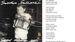 Sandro Saccocci