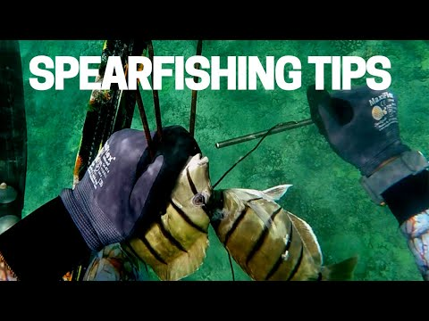 Spearfishing Hawaii 2019: Less Fish, More Tips