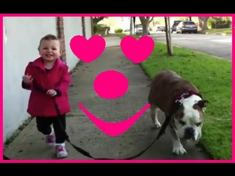 DOGS and BABIES are BEST FRIENDS forever - Cute and funny compilation